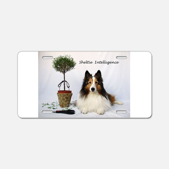 Sheltie Intelligence Aluminum License Plate