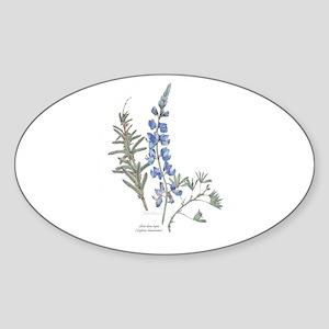 Silver Dune Lupin (Lupinus chamissonis) Sticker