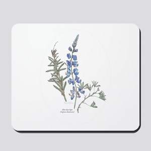 Silver Dune Lupin (Lupinus chamissonis) Mousepad