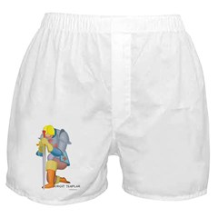 The Knight Templar kneeling Boxer Shorts
