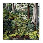 Canadian Landscape Painting Art Coasters
