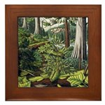 Canadian Landscape Painting Framed Art Tile Gifts