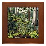 Canadian Landscape Painting Framed Art Tile Gifts