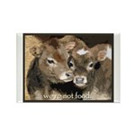 Not Food- Cows Rectangle Magnet