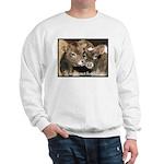 Not Food- Cows Sweatshirt