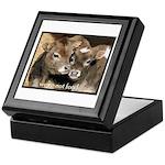 Not Food- Cows Keepsake Box
