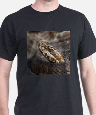 Water Moccasin T-Shirt