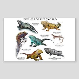 Iguanas of the World Sticker (Rectangle)
