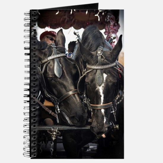 Horses with Carriage Journal