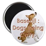 Basenji: Dogs being Catty Magnet