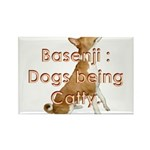 Basenji: Dogs being Catty Rectangle Magnet