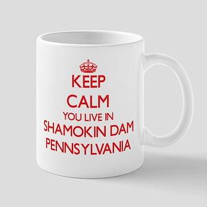 Keep calm you live in Shamokin Dam Pennsylvan Mugs