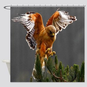 Red Shouldered Hawk Shower Curtain