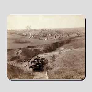Villa of Brule - John Grabill - 1891 Mousepad