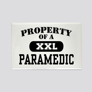 Property of a Paramedic Rectangle Magnet