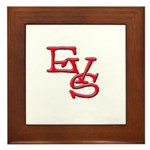 EVS Framed Tile