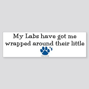 Wrapped Around Their Paws (Lab) Bumper Sticker
