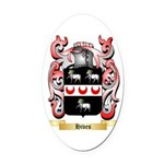 Hives Oval Car Magnet