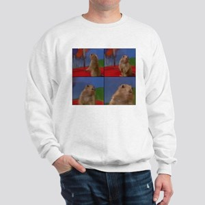Dramatic Look Sweatshirt