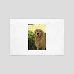 golden retriever Nala in shade in back 4' x 6' Rug