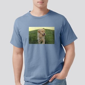 golden on grass T-Shirt