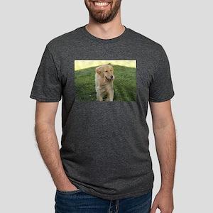 golden on grass T-Shirt