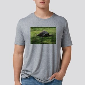 tortoise Mens Tri-blend T-Shirt