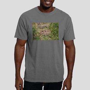 Mole Mens Comfort Colors Shirt