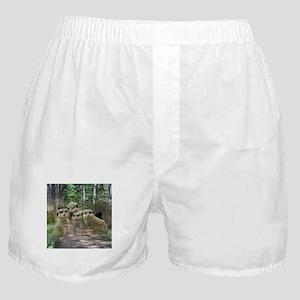 Magic Animals MEERKATS Boxer Shorts