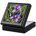 Purple Irises #2 -Keepsake Box