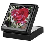 Red Parrot Tulip #1 - Keepsake Box