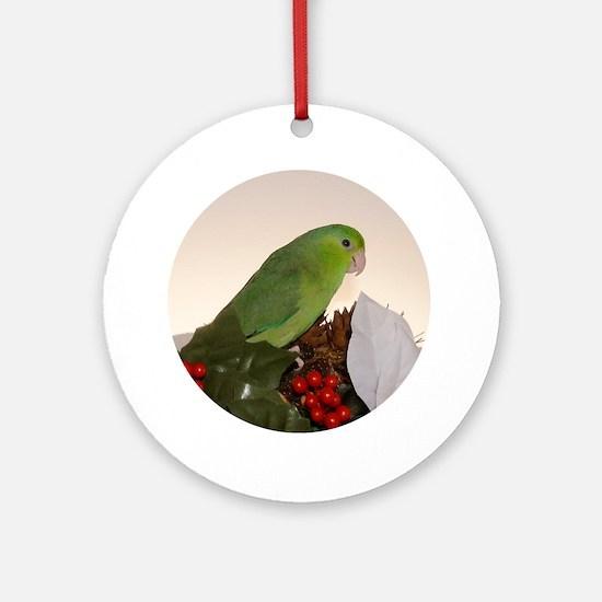 Female Lucida Pacific Parrotlet Ornament