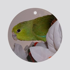 Male Mexican Parrotlet Ornament
