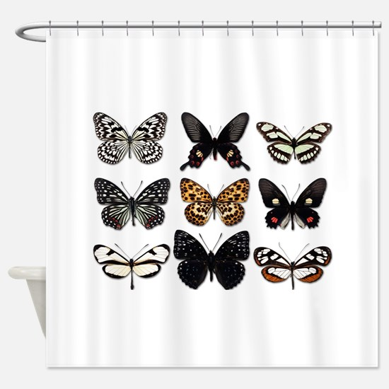 Butterfly Display Shower Curtain