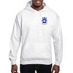 Hirschorn Hooded Sweatshirt