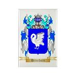Hirschorn Rectangle Magnet (100 pack)