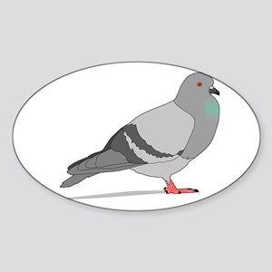 Cartoon Pigeon Sticker