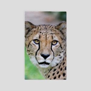 Cheetah_2014_0901 Area Rug