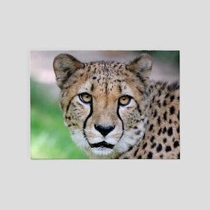 Cheetah_2014_0901 5'x7'Area Rug