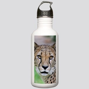Cheetah_2014_0901 Stainless Water Bottle 1.0L
