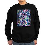 StarPlay Sweatshirt (dark)