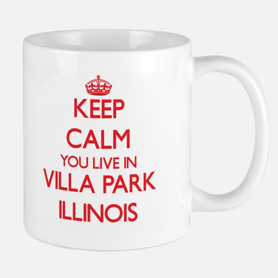 Keep calm you live in Villa Park Illinois Mugs