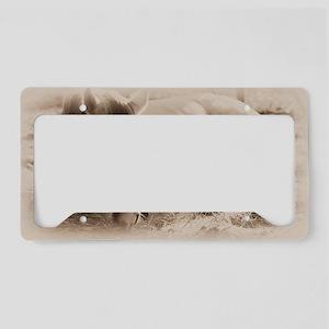 Snoozing License Plate Holder