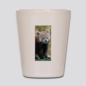 Red Panda 004 Shot Glass