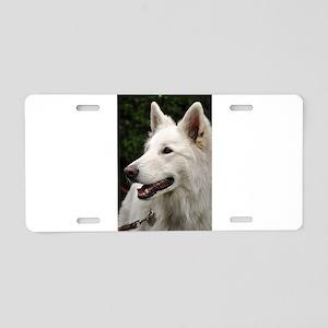 white-shepherd-dog Aluminum License Plate