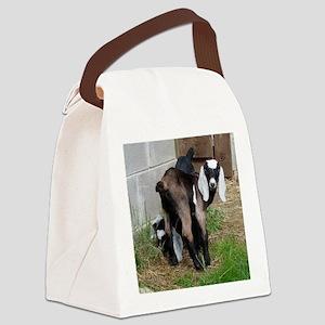 Nubian Doeling Canvas Lunch Bag