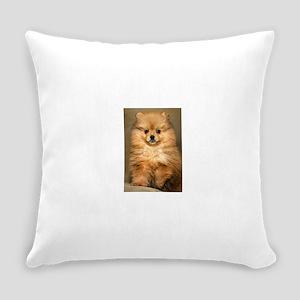 pomeranian Everyday Pillow