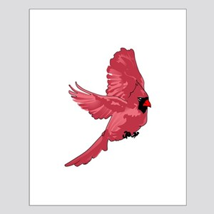 MALE CARDINAL Posters