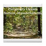 Purgatory Chasm Tile Coaster