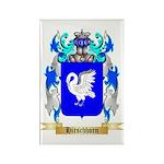 Hirschhorn Rectangle Magnet (100 pack)
